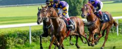 Horse racing_small